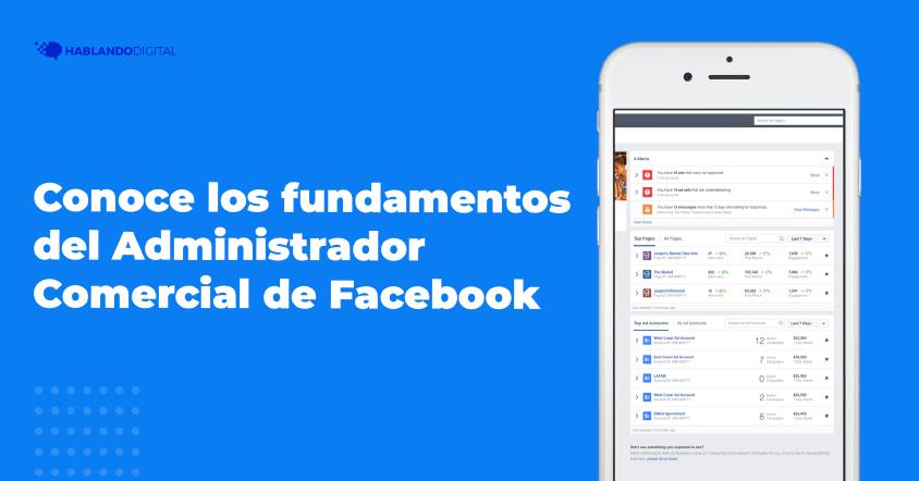 Los fundamentos del administrador comercial de Facebook